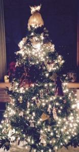 angel tree 11